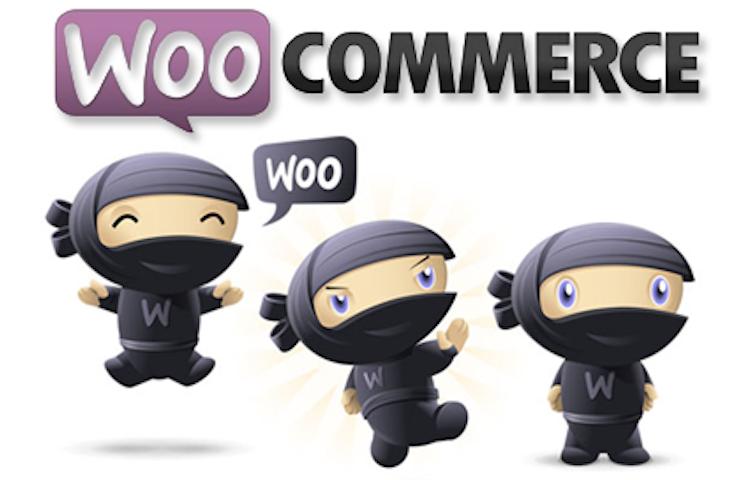 WooCommerce l'e-Commerce più Installato